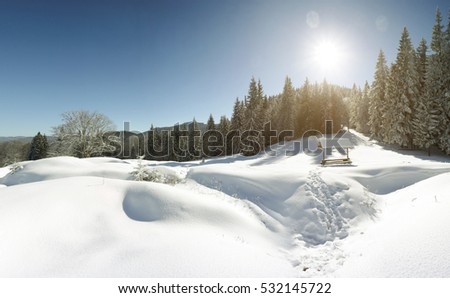 beautiful winter Carpathian landscape, ridge Kukul, Carpathian mountains, west ukraine, east europe, beauty world