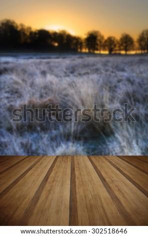 Beautiful Winter landscape across frosty fields with wooden planks floor - stock photo