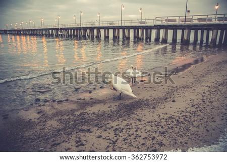 Beautiful winter landscape, and the Baltic Sea. Orlowo Gdynia - stock photo