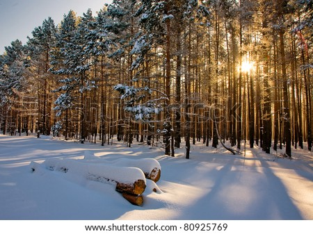 Beautiful winter landscape at sunset with fog and snow - stock photo