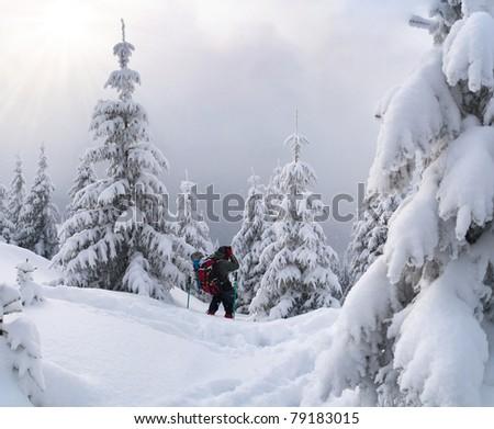 Beautiful winter landscape in the Carpathian mountain - stock photo
