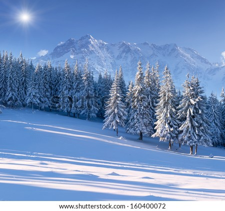 Beautiful winter landscape in the mountains - stock photo
