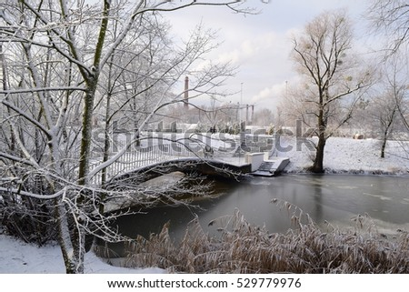 Beautiful winter landscape near the lake in the new year