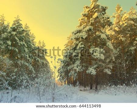 stock-photo-beautiful-winter-landscape-w