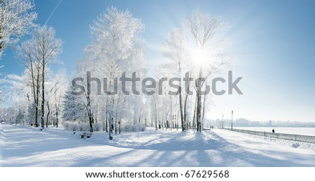 Beautiful winter landscape with snow covered trees - stock photo