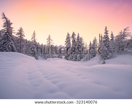 Beautiful winter landscape with snow covered trees -Slovenia - stock photo