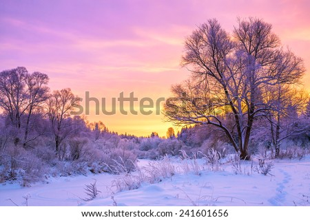 beautiful winter landscape with sunset and the  forest - stock photo