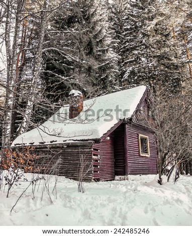 Beautiful  winter landscape with  wooden  house in winter covered with snow.  - stock photo