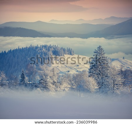 Beautiful winter morning in the foggy mountains. Retro style. - stock photo