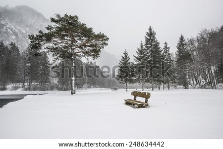 Beautiful winter scenery by the lake and the River. Heavy snow and blizzard is giving the scenery a unique appearance and look. Bench is the resting place near the tree with bridge behind. - stock photo
