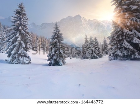 Beautiful winter sunrise in the mountains; sun - stock photo