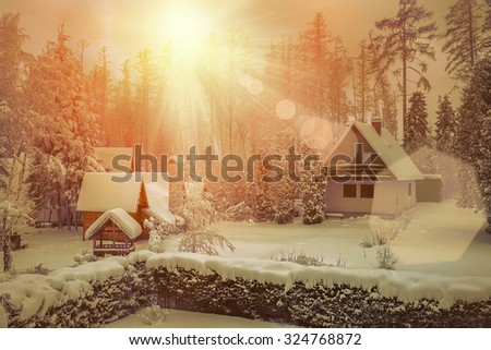 Beautiful winter view with sunlight.
