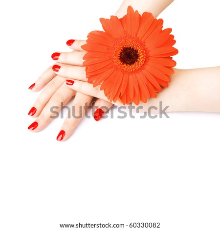 Beautiful woman hand with red manicure. White background. - stock photo