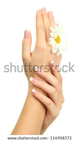 Beautiful woman hands with camomile, isolated on white