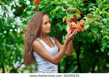 Beautiful woman picking guelder rose berries - stock photo