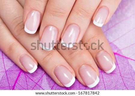 Beautiful woman's nails with beautiful french manicure   - stock photo