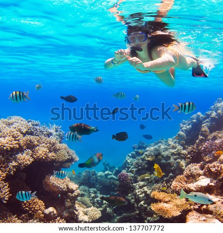 Beautiful woman snorkeling in Red Sea of Egypt - stock photo