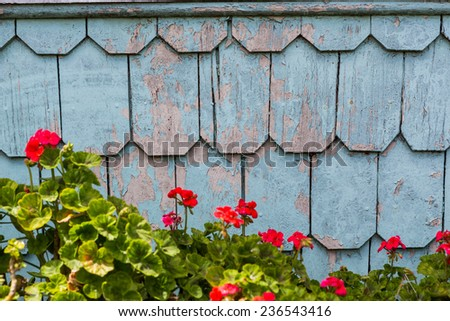 Beautiful wood shingles, traditional style of siding in Chile - stock photo