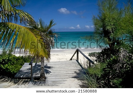Beautiful wooden entrance filled with vegetation leading to a tropical beach. - stock photo
