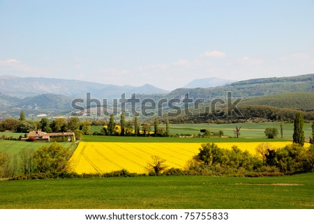 Beautiful yellow field of colza near an old farm in a typical landscape of south of France, Drome, Saou - stock photo