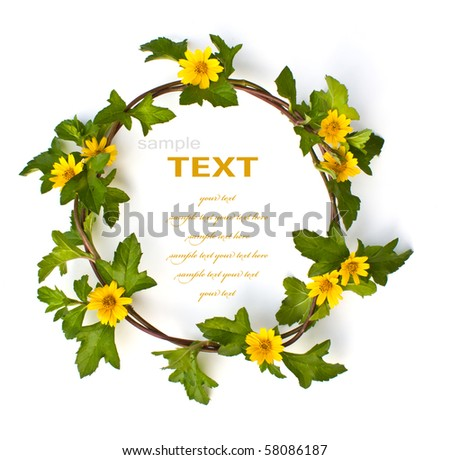 Beautiful yellow Flower Crown isolated on white background - stock photo