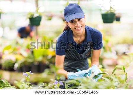 beautiful young nursery worker gardening in greenhouse - stock photo