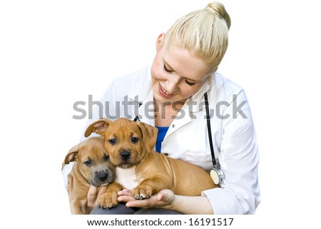 Beautiful young veterinarian holding two sweet puppies isolated