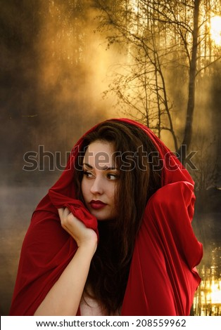 Beautiful young woman in fantasy style. Girl in a red dress. Book cover - stock photo