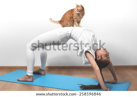 Beautiful young woman in yoga posing with cat on a studio background. Nice sport hairstyle like pony tales. Girl in white clothes for fitness and pilates. Perfect shapes, fit and strong body in asana - stock photo