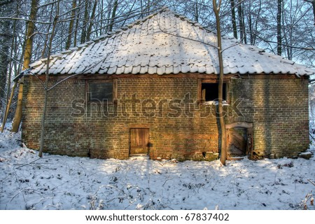Beautifully lit by yellow sunrays, an old colorful barn in winter woods fully covered with snow