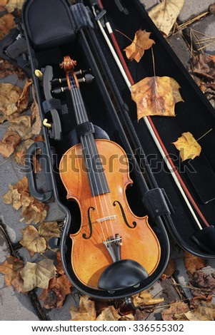 Beautifully made wooden violin in its case with autumn leaves around.