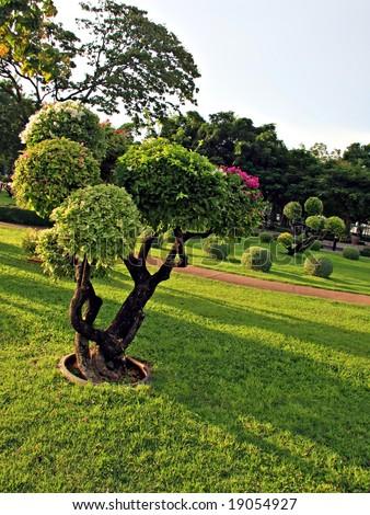 Beautifully manicured park garden. - stock photo
