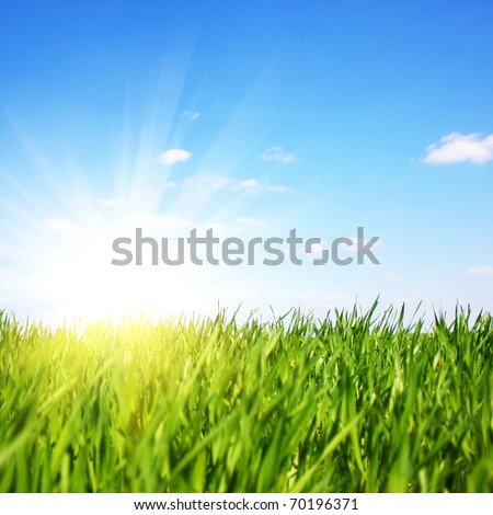 beautifully summer day - stock photo