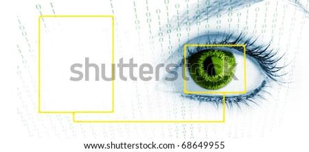Beauty big eye. Macro. Isolated on white. - stock photo