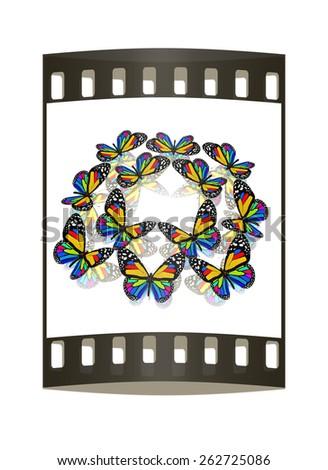 beauty butterflies. The film strip - stock photo