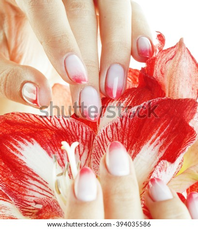 beauty delicate hands with pink Ombre design manicure holding flower amaryllis close up isolated warm macro - stock photo