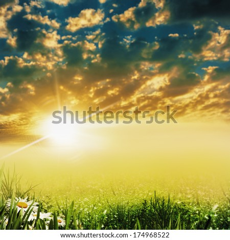 Beauty evening on the meadow, abstract dramatic landscape - stock photo