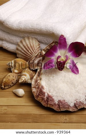 Beauty from the Sea - stock photo