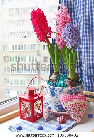 Beauty hyacinths and lantern with a conflagrant candle on a window - stock photo