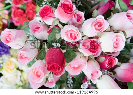 beauty of pink rose bouquet flower - stock photo