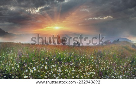 Beauty panorama of mountain meadows in Transcarpathia - is the abundance of vegetation on the background of beautiful tops and interesting weather conditions - stock photo