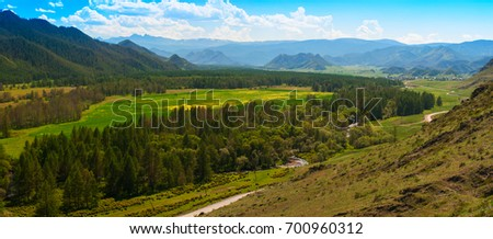 Beauty panoramic picture of summer Altai. Green and yellow meadow with trees on mountain background