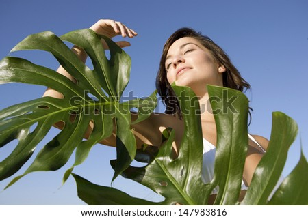 Beauty portrait of an attractive young woman wearing a bikini standing next to exotic green leaves against an intense blue sky, outdoors. - stock photo