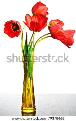beauty red tulips in vase - stock photo