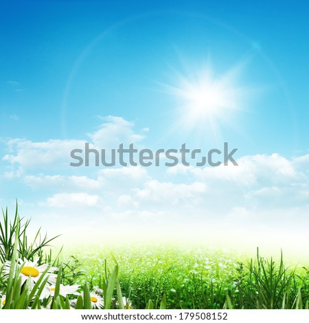 Beauty summer, abstract environmental backgrounds with daisy flowers - stock photo