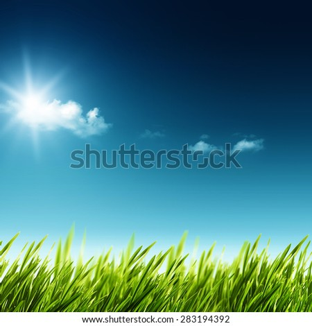 Beauty summer day. Abstract natural landscape with green grass and blue skies - stock photo