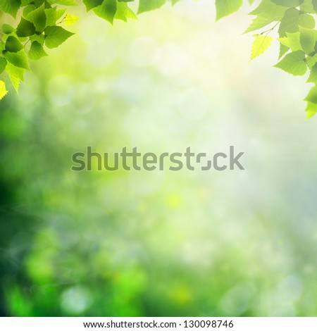 Beauty sunny day in the forest, abstract natural backgrounds - stock photo