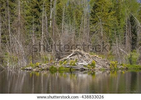Beaver den lodge along side smooth mirror reflection pond of teton mountains scenic landscape - stock photo