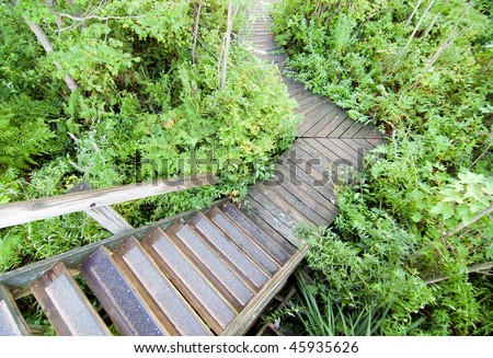 Beaver Lake Nature Center boardwalk - stock photo