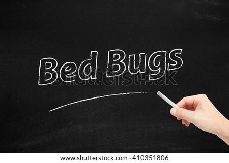 Bed Bugs written on blackboard - stock photo